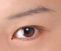 Crease and Contour Eyeshadow: Asian Eyes VS Caucasian Eyes ...