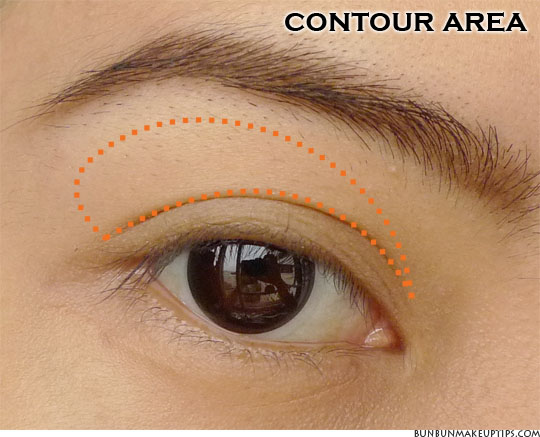 contour area eye makeup placement