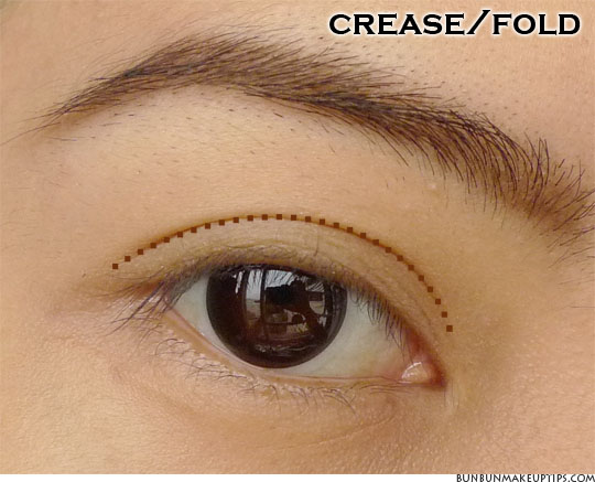 where to apply makeup crease