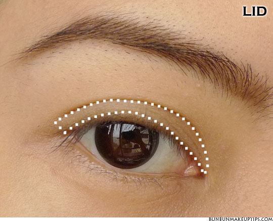 eye makeup placement for eyelid