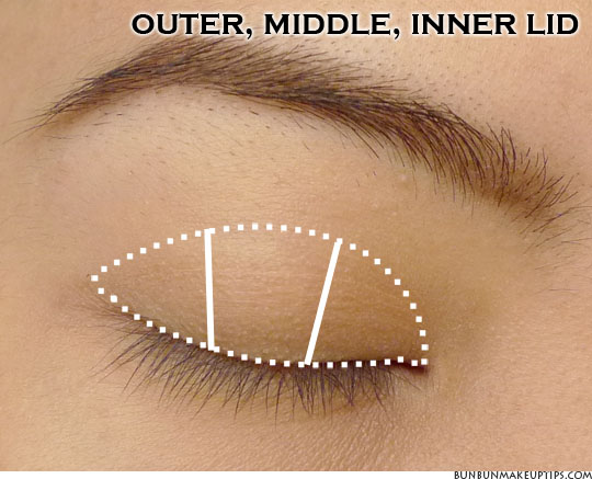 eye makeup placement for outer, middle, inner lid closed eye