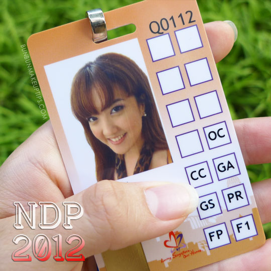 NDP-Preview-2012-Backstage-pass