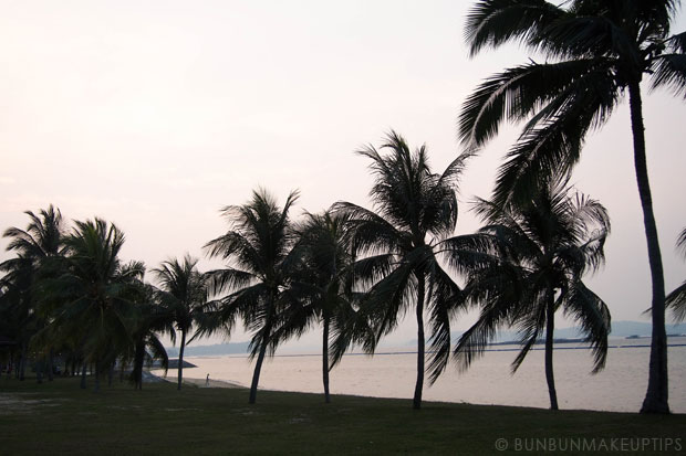A-Day-At-The-Beach-With-A-Special-Someone-44-Pasir-Ris-Park-Singapore