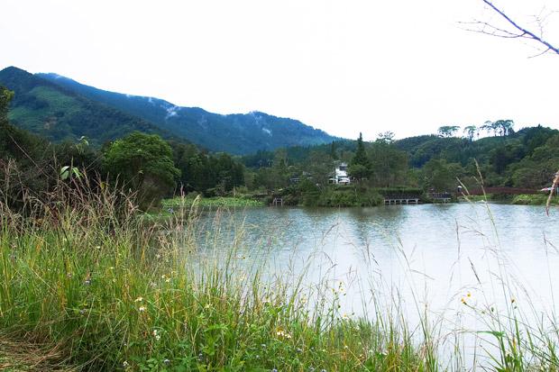 Taiwan-Miaoli-Minsu-9224245