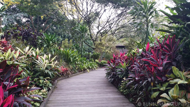 New-Year-Engagement-Anniversary-DIY-Gifts_Singapore-Botanic-Gardens-8