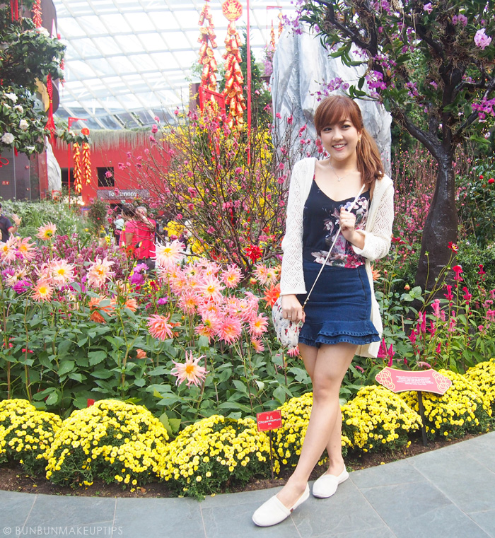 Ginza-Calla_Gardens-By-The-Bay-Flower-Dome_CNY-2015_11