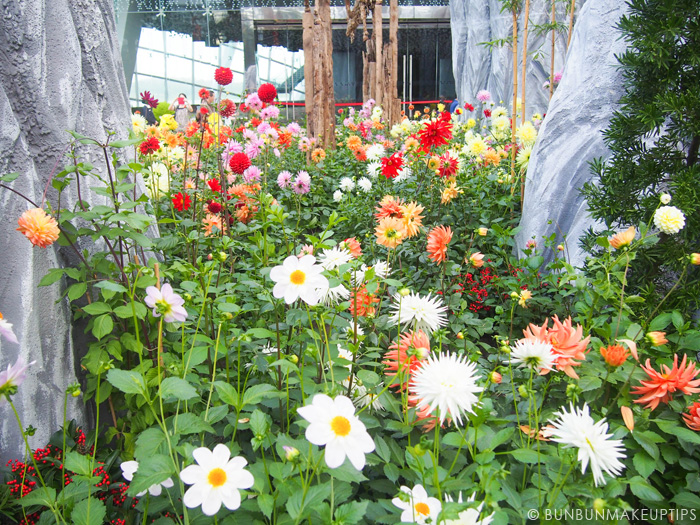 Ginza-Calla_Gardens-By-The-Bay-Flower-Dome_CNY-2015_5