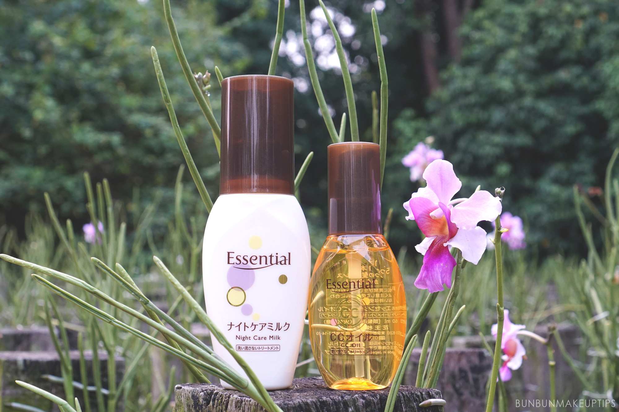Essential-CC-Oil-and-Night-Care-Milk-For-Hair-Review_9