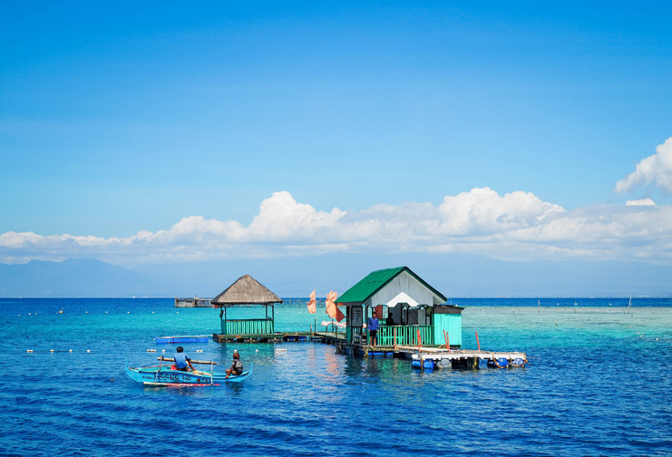 Things-To-Do-In-Davao_Samal-Island-Snorkelling_3.1