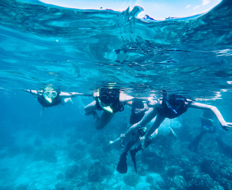 Things-To-Do-In-Davao_Samal-Island-Snorkelling_5
