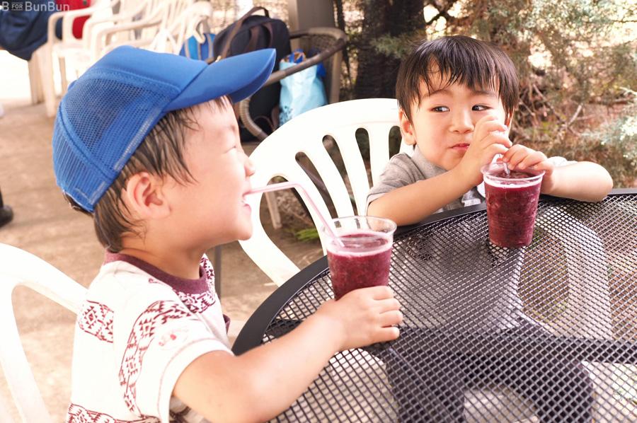 Yokohama-Blueberry-Farm-Harvest_4
