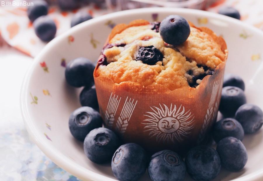 Yokohama-Blueberry-Farm-Harvest_9