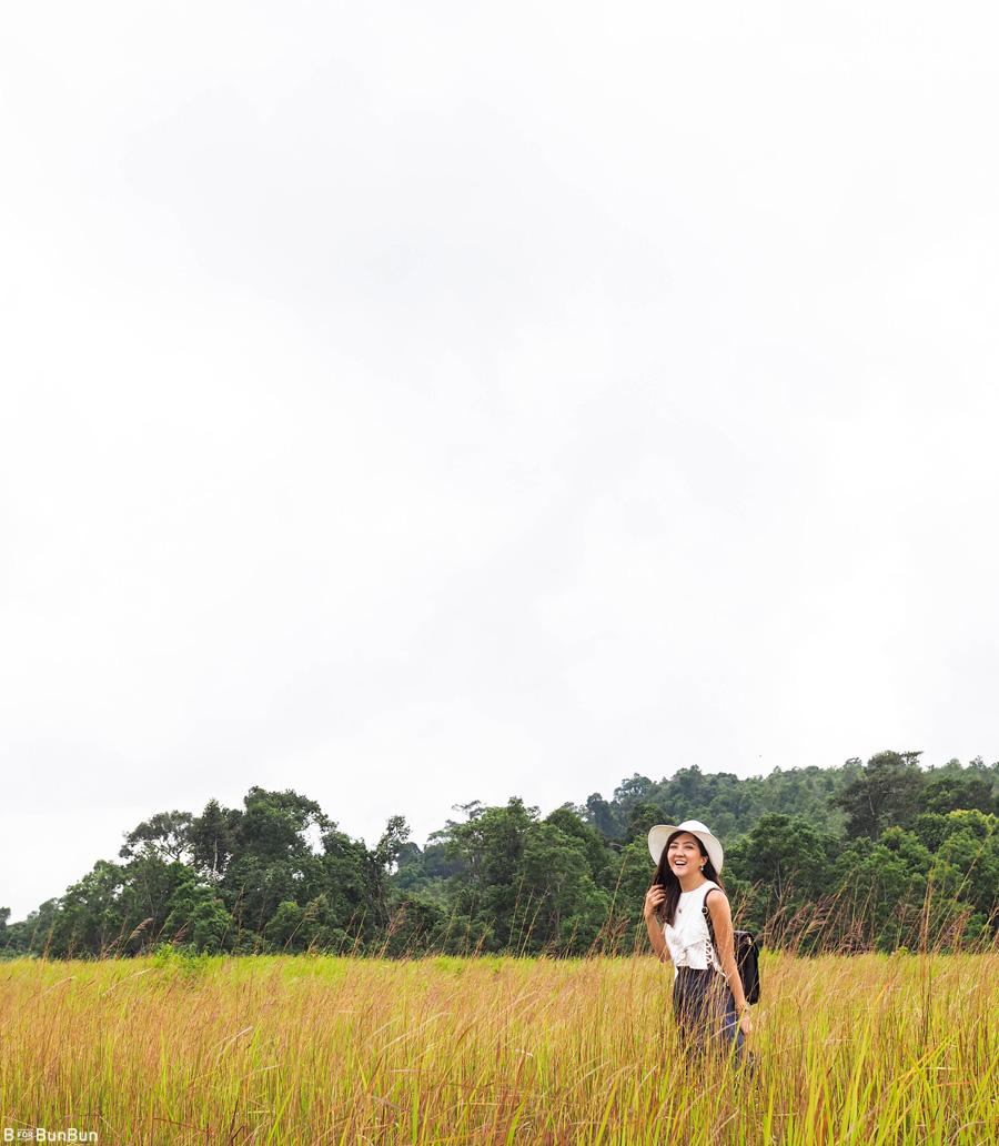 Khao-Yao-National-Park-Review_2